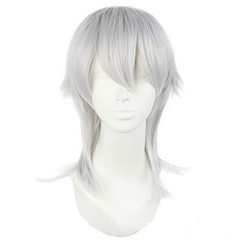 Europe and America Women Costume Wig Man Silver Grey Short Party Cosplay Wig Kostueme Straight Hair Wigs 1102
