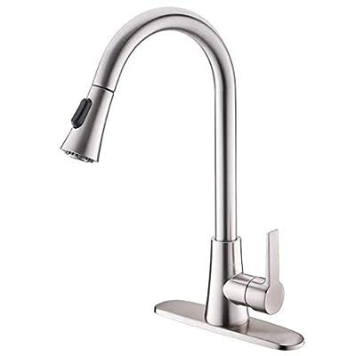 Brushed Nickel Leadfree Kitchen Faucet