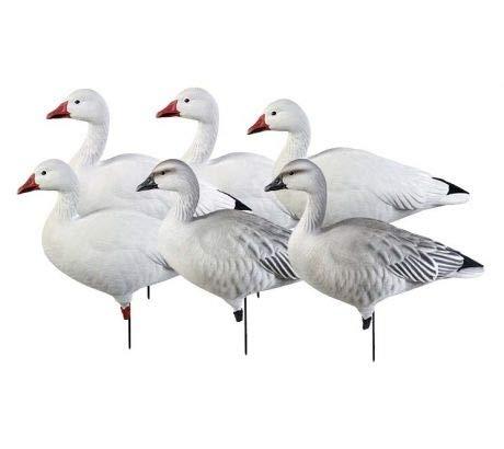Aromzen Pro-Grade Goose Decoy,Full Body Snows/Active Pack,1/2 Dozen