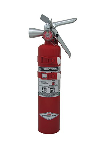 Amerex B385TS, 2.5lb Halotron I Class B C Fire Extinguisher (Best Extinguisher For Gas Fire)