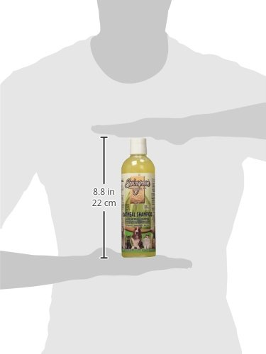 Amazon.com : Envirogroom Oatmeal Shampoo, 17 oz : Pet Natural Shampoos : Pet Supplies