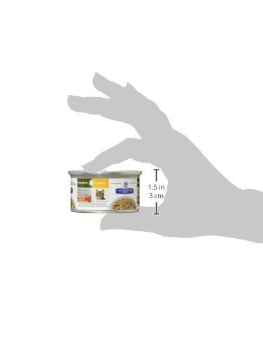 Amazon.com : Hills Prescription Diet Metabolic + Urinary Feline - Vegetable and Chicken Stew - 24X2.9Oz : Pet Supplies