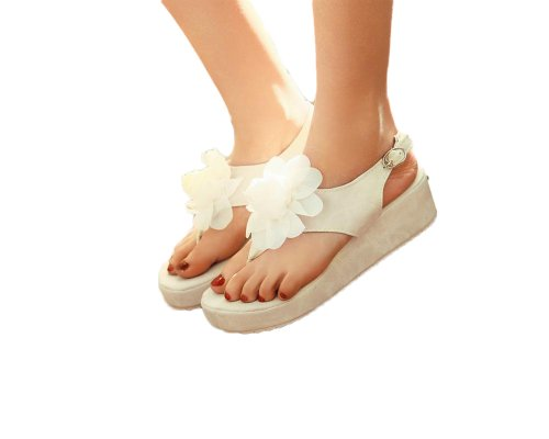 Charm Foot Fashion Flower Womens Wedge Heel Thong Sandals Shoes Beige sVpalzfW5