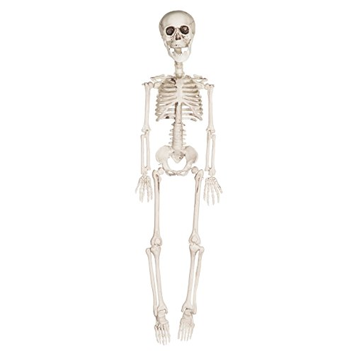Frugal Fernando Skeleton
