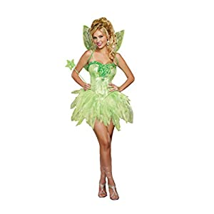 Dreamgirl Womens Fairy Licious Costume