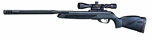 Hornet Maxxim Air Rifle .177 Cal (Best Scope For 22 Hornet)