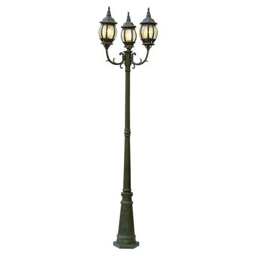 French Outdoor Lamp Posts - 3