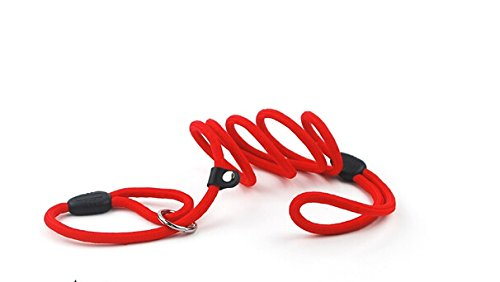 Fashion Shop Fashion Shop Nylon Rope Dog Whisperer Cesar Millan Style Slip Training Leash Lead and Collar S/M/L (L (1.0130cm), Red) (Dog Snap Cesar Leash Millan)