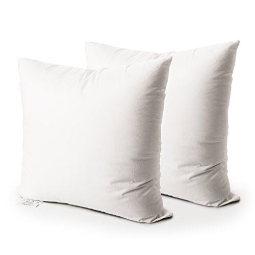 Down Alternative Pillow Insert - Edow Luxury Inserts, Soft Down Alternative Square Form Throw Pillow, Cushion,Sham Stuffer,Machine Washable,Cotton Cover, 2pc White