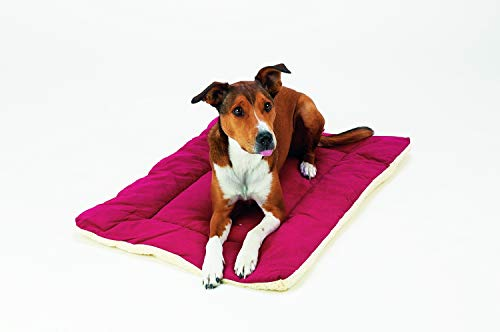 "Pet Dreams Dog Crate Bed -Original Crate Pad/Kennel Mat - Quality Bedding Since 1999, 2 in1 Reversible for Summer and Winter. 100% Wash & Dry, Never Bunches! X-Large 42"" Khaki Tan"