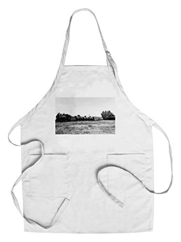 (Minden, Nevada - View of the Virginia and Truckee Railroad Train (Cotton/Polyester Chef's Apron))