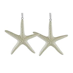 31YwRKoKAuL._SS300_ 50+ Starfish Christmas Ornaments
