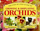 img - for 'STEP BY STEP GUIDE TO GROWING AND DISPLAYING ORCHIDS, A: ALL YOU NEED TO KNOW ABOUT CREATING A SPECTACULAR DISPLAY (STEP BY STEP GUIDES)' book / textbook / text book