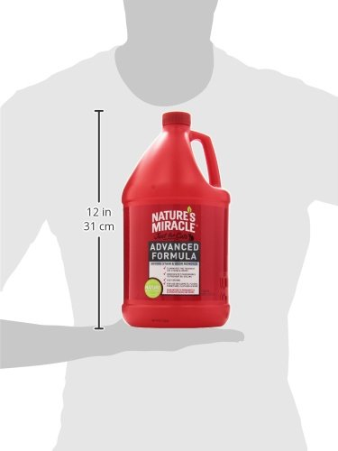 Nature S Miracle Just For Cats Advanced Stain And Odor Formula