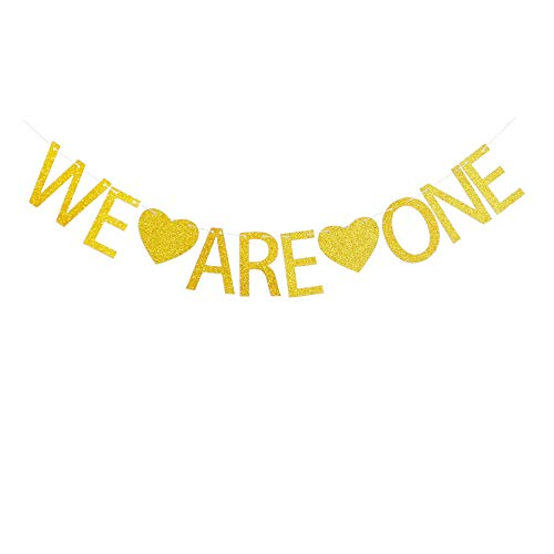 We are One Banner for Twins' First Birthday