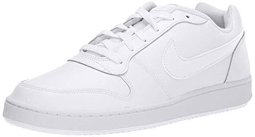Nike Men's Ebernon Low Basketball Shoe, white/white, 10 Regular US