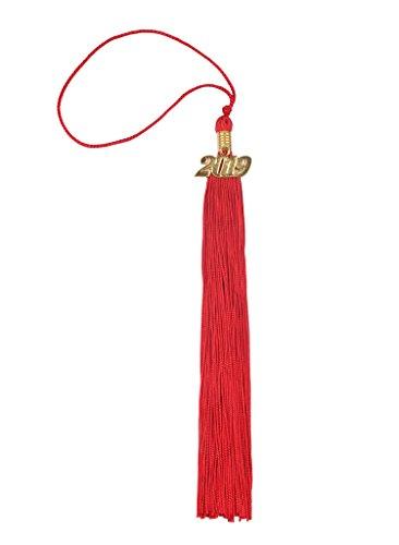 Graduation Tassel with Gold 2019 Year Charm ()