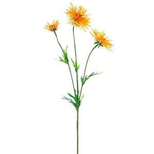 "29"" Silk Spider Aster Mum Flower Spray -Butterscotch (Pack of 12) 47"
