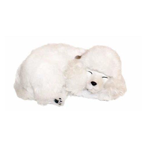 Lizzy® Precious Petzzz Kuscheltier, lebensecht, süßer Welpe mit Atembewegungen, ideal als Geburtstagsgeschenk Pudel