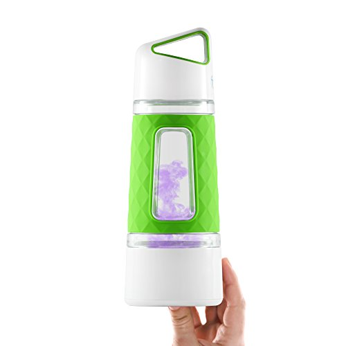 Fruition Hot and Cold Tea and Fruit Infuser Water Bottle with Instant Infusing Basket (Kiwi-Lime)