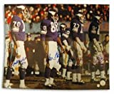 "Purple People Eaters Autographed Minnesota Vikings 16"" x 20"" Photograph (Unframed)"