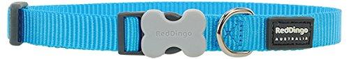 Red Dingo Classic Dog Collar, Medium/Large/20mm, Turquoise
