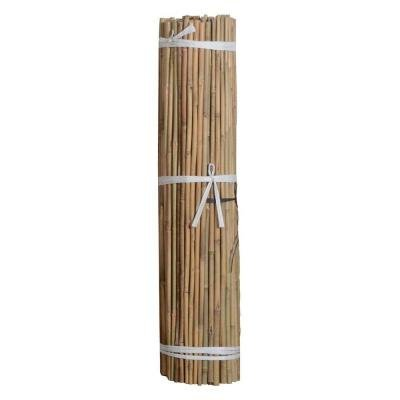 Natural Bamboo Stakes 4 ft 48'' x 3/8'' 500 ct Bundle by d'vine Products