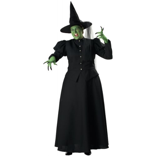 Plus Size Black Witch Costume -