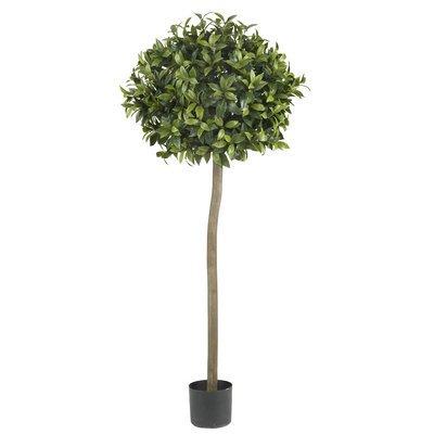 - Nearly Natural 5' Sweet Bay Ball Topiary Silk Tree