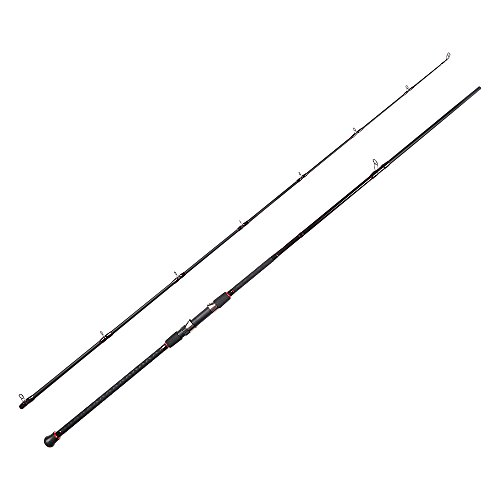 Fiblink Surf Casting Fishing Rod 2-Piece Graphite Travel Baitcasting Fishing Rod (Length: 10') (Piece 2 Rod Surf Heavy)
