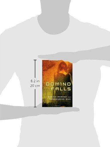 Amazon.com: Domino Falls: A Novel (9781451617023): Steven ...