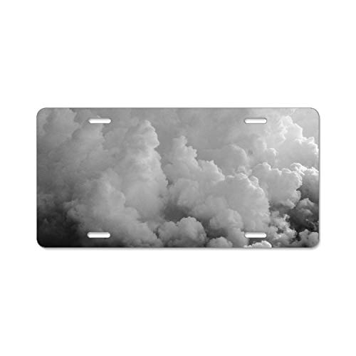 (MIKONG Thick Cloud License Plate Frame Theft-Proof Frames Stainless Steel Board Frames)