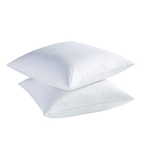 Dreamland Bedding White Feather Down Pillows (Set of 2) - 20x20 inch Square Sofa and Couch Cushion, Feather Throw Pillow with 100% Cotton Removable Zipped Cover.