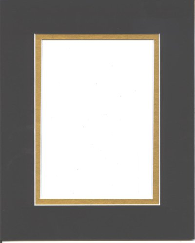 18x24 Black & Gold Double Picture Mats Bevel Cut for covid 19 (Double Picture Mats Matting coronavirus)