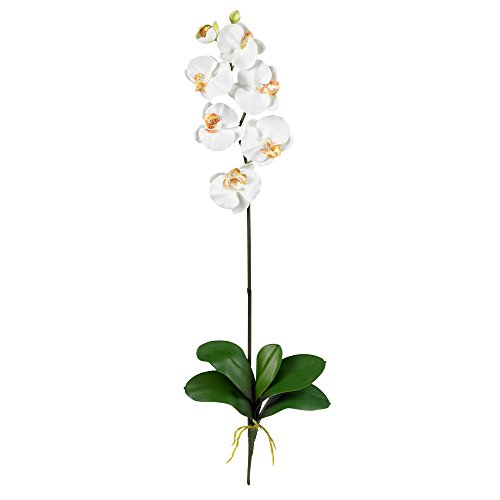 Cream-Phalaenopsis-Silk-Orchid-Flower-wLeaves-6-Stems