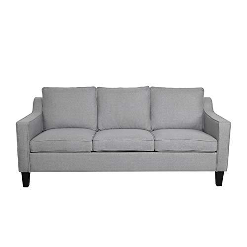 Amazon.com: Amethyst Contemporary Fabric Sofa with Plush Cushions ...