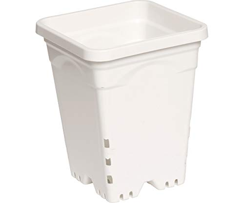 Hydrofarm 6 x 6 Square White Pot – 50 Pack