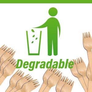 College Events kompostierbar und umweltfreundliches Besteck f/ür Partys nat/ürliches Birkenholz biologisch abbaubar 16,5 cm Einweg-Holzgabeln K/üche und Zuhause 100 St/ück