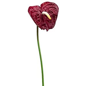 "Small Artificial Anthurium Flower Stem in Dark Red - 26"" Tall - Set of 6 120"
