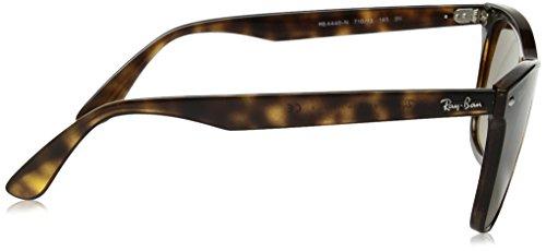 Sol Gafas BLAZE SHADED 4440N HAVANA unisex RB de BROWN Ray WAYFARER Ban tpw565fq
