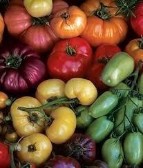 - Rainbow Blend (Heirloom) Tomato 100 Seeds By Jays Seeds Upc 643451294989
