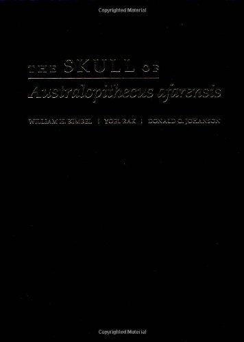 The Skull of Australopithecus afarensis (Human Evolution Series)