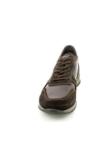 In sneaker E Camoscio Marrone Pelle Nerogiardini PYwqgq