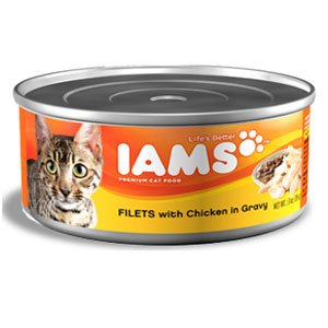 Iams ProActive Health Adult Filets with Chicken in Gravy Can