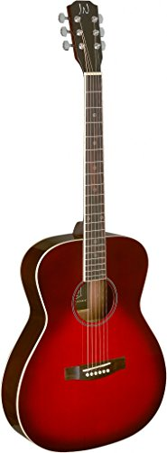 James Neligan 6 String Acoustic Guitar (BES-A TRB) ()