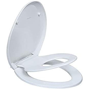 Superb Mayfair Nextstep Toilet Seat With Built In Potty Training Gmtry Best Dining Table And Chair Ideas Images Gmtryco