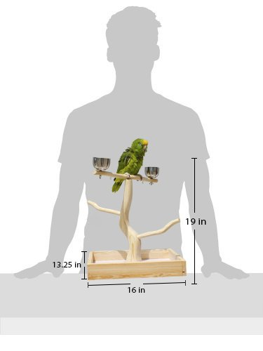 Birds LOVE Tabletop T-Stand Deluxe Play Gym Bird Stand for Cockatiels Conures African Greys Amazons-Includes 2 top perches Easy Assembly Easy to Clean this stand by Birds LOVE (Image #2)