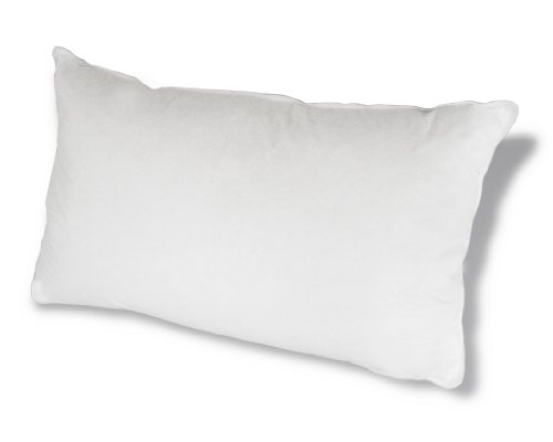 Down Etc 75-Percent White Goose Feathers Hypoallergenic Queen Pillow, White by Down Etc