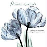 FLOWER SPIRITS; The Beauty That Blooms Within
