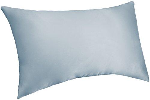 Blue Silk Pillow - Pinzon Mulberry Silk Pillowcase - Standard, Light Blue